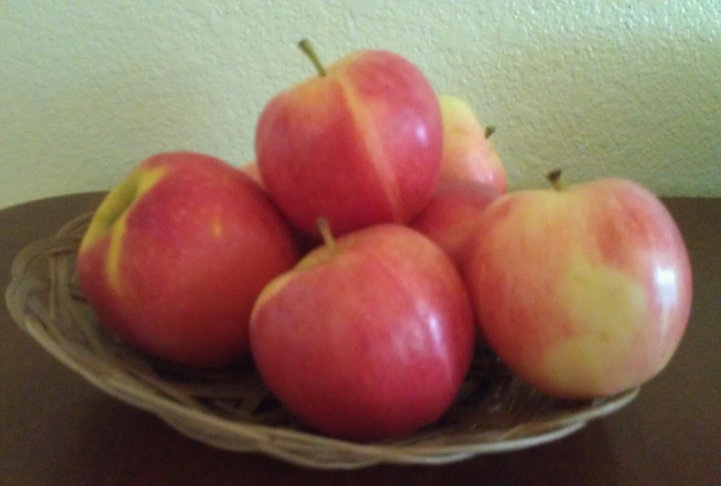 Bowl of Organic Apples