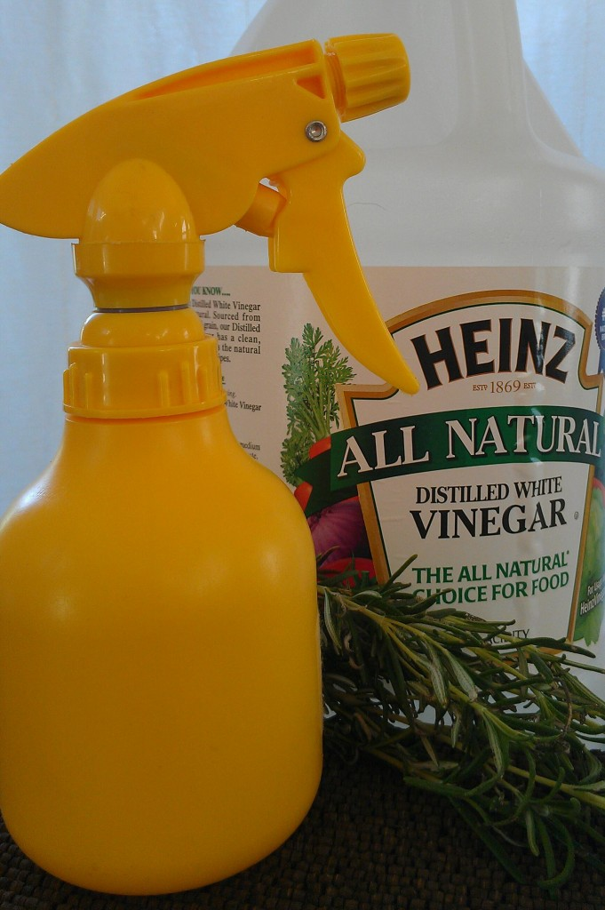A DIY all-purpose vinegar spray is easy to whip up and use for cleaning and disinfecting multiple surfaces in your home naturally and safely without any harsh chemicals.