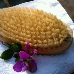 This simple tool, available at most drug stores, can be used to do dry skin brushing -- a DIY spa therapy that boosts your immune system and more.