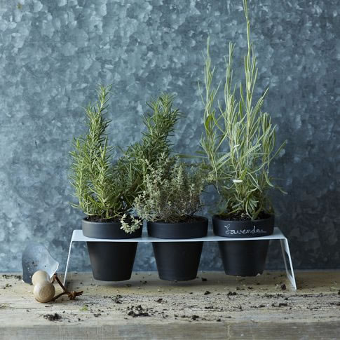 West Elm Chalkboard Planter Set with Stand