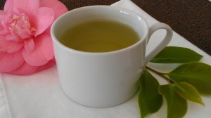 Green tea, which is derived from the Camellia sinensis plant, has been shown to be beneficial in improving cognitive function, especially working memory according to a new study. It might also prove to be useful in treating cognitive impairments, such as dementia.