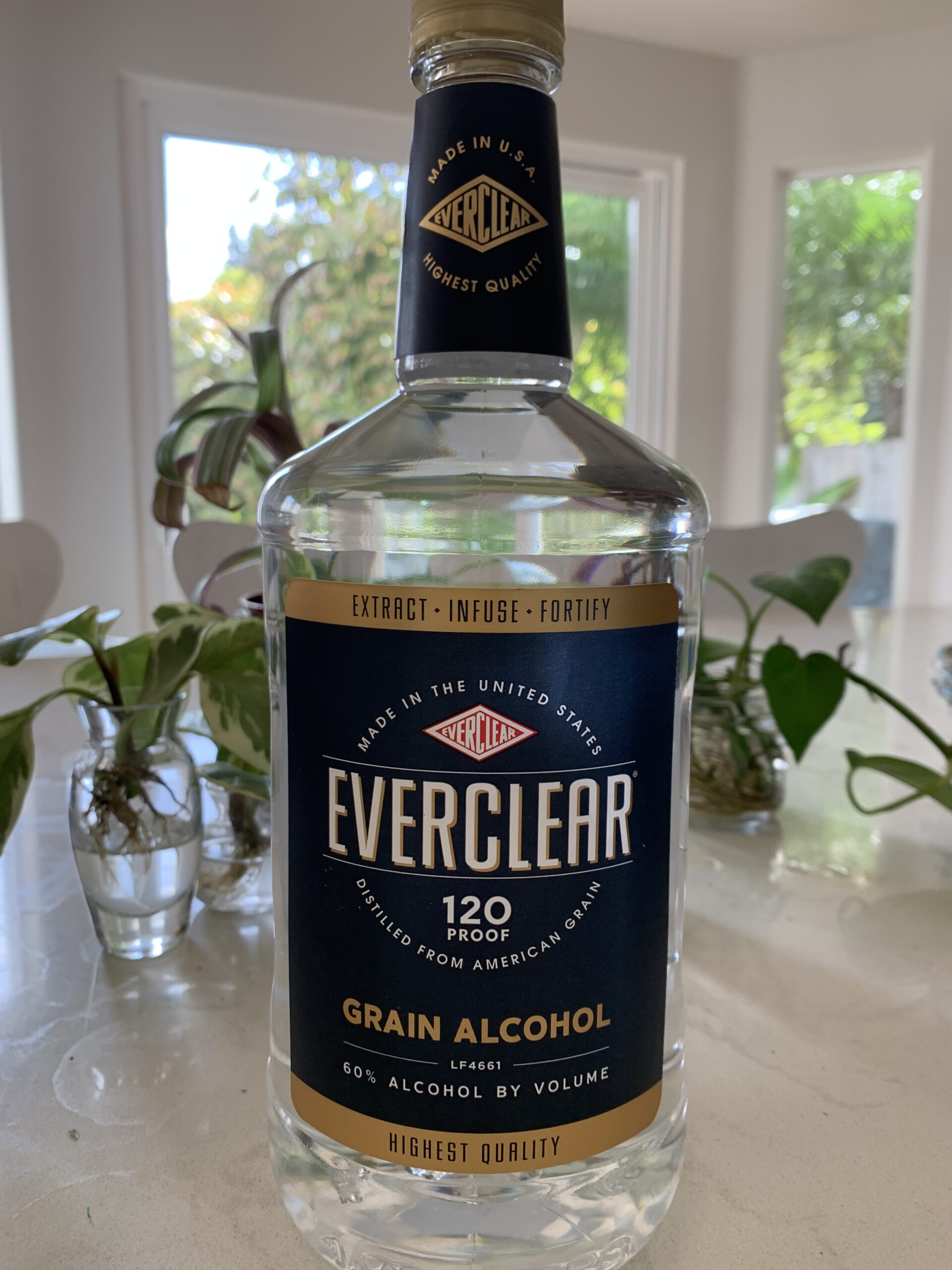 Everclear Grain Alcohol