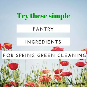 Use pantry ingredients to clean your home in a safe and eco-friendly manner from top to bottom. Toxin-free and worry-free!